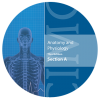 ANATOMY & PHYSIOLOGY CD TEACHER
